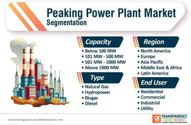 peaking power plant market segmentation