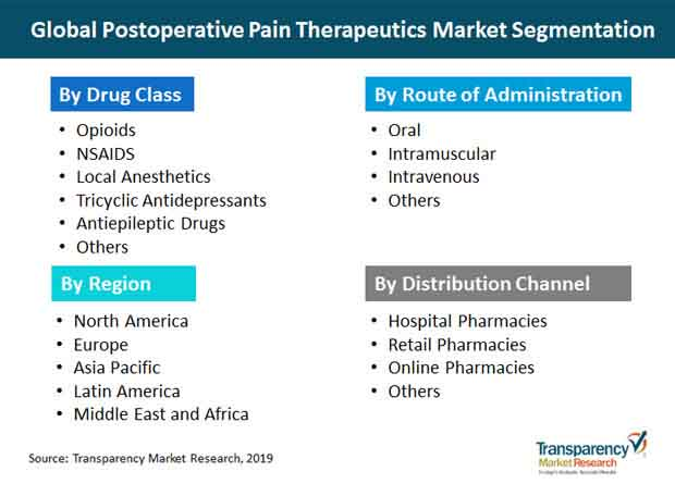postoperative pain therapeutics segmentation