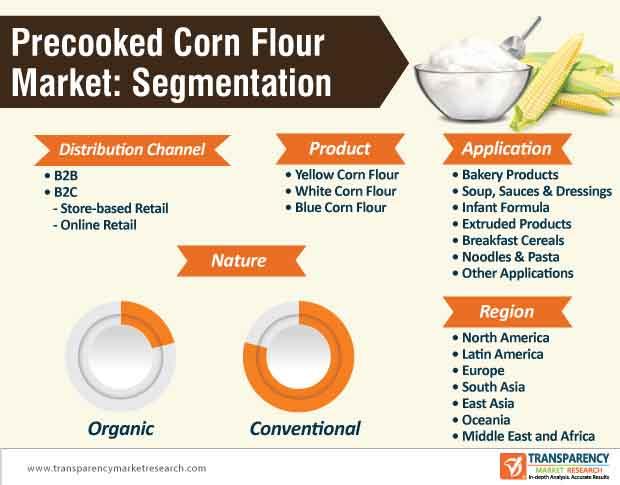 precooked corn flour market segmentation