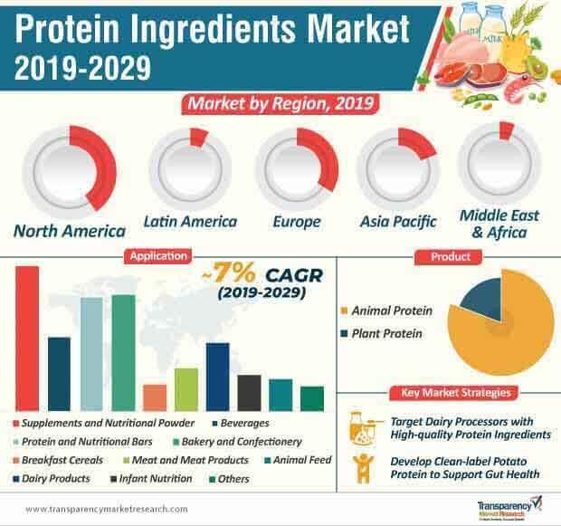 protein ingredients market infographic