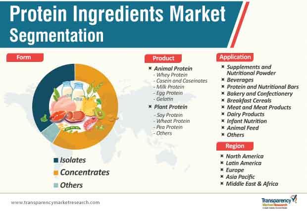 protein ingredients market segmentation