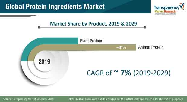 protein ingredients market share