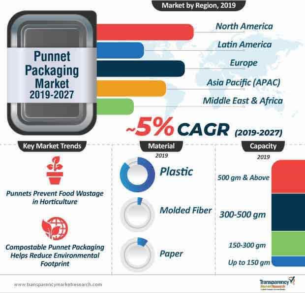 punnet packaging market infographic