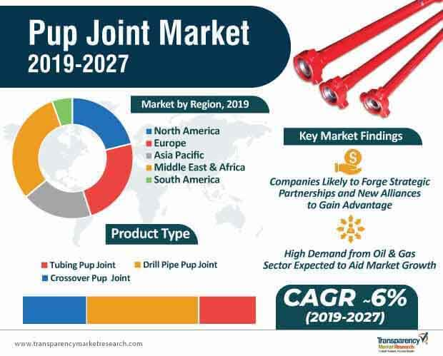 Pup Joint  Market Insights, Trends & Growth Outlook