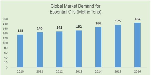 rose geranium essential oil market