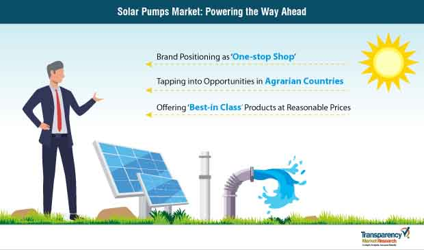 Solar Pumps  Market Insights, Trends & Growth Outlook