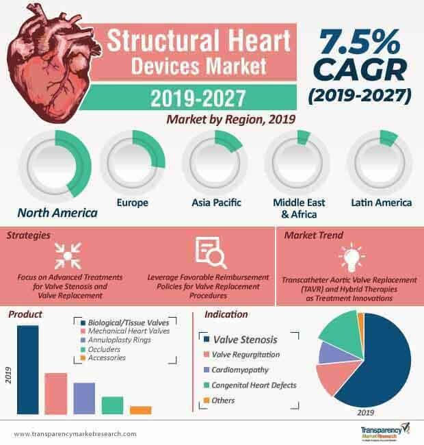 structural heart devices market infographic