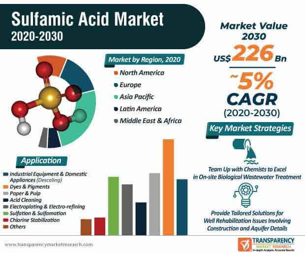 sulfamic acid market infographic
