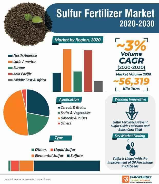 sulfur fertilizer market infographic
