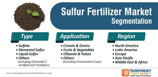 sulfur fertilizer market segmentation