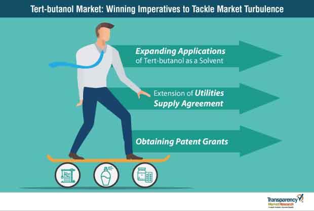 tert butanol market strategy