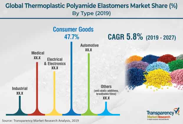 Thermoplastic Polyamide Elastomers  Market Insights, Trends & Growth Outlook