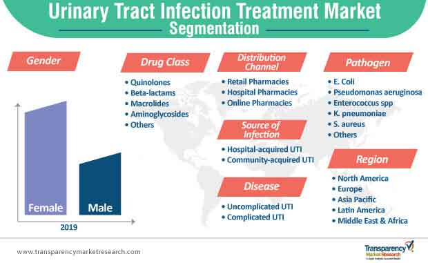 urinary tract infection treatment market segmentation
