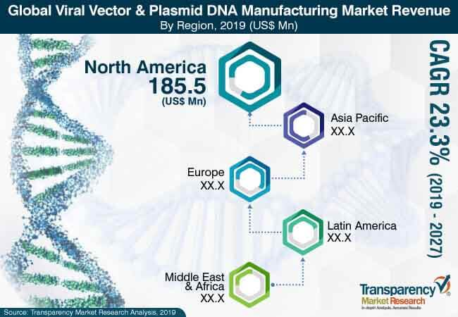 Viral Vector & Plasmid DNA Manufacturing  Market Insights, Trends & Growth Outlook