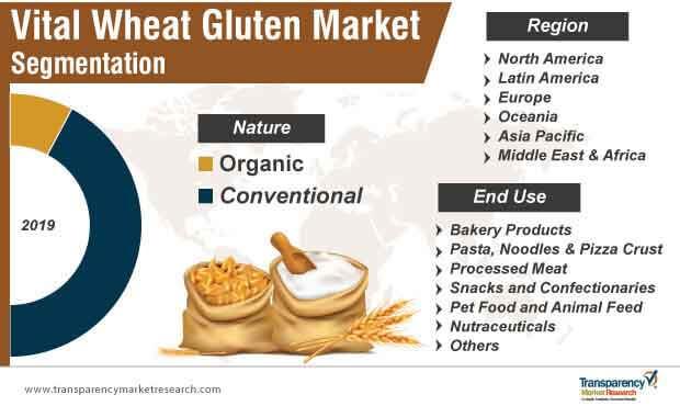 vital wheat gluten market segmentation