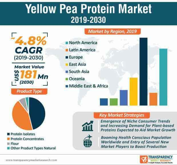 Yellow Pea Protein  Market Insights, Trends & Growth Outlook